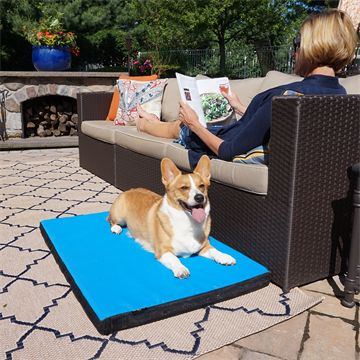 Coussin Cool-Air Pad, Petit
